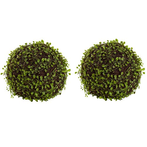 Green 9-Inch Mohlenbechia Ball, Set of Two