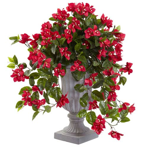 Bougainvillea with Urn UV Resistant