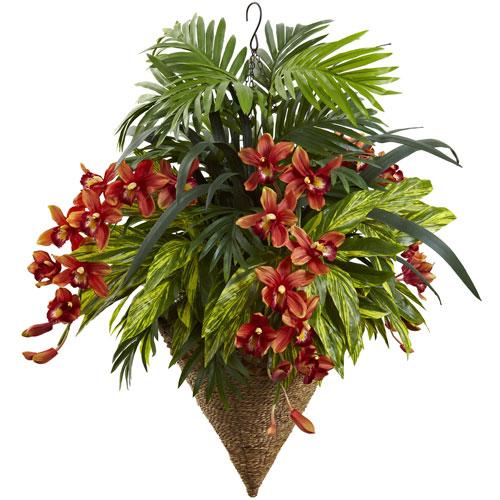 Mixed Tropical and Cymbidum Hanging Basket