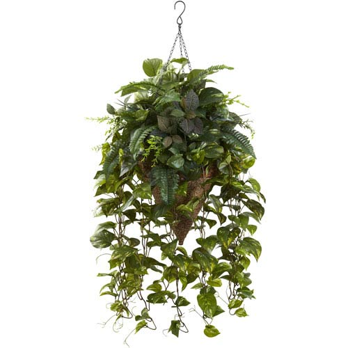 Green Vining Mixed Greens with Cone Hanging Basket