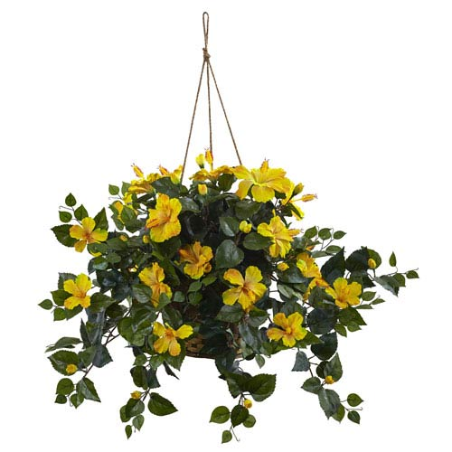 Yellow Hibiscus Hanging Basket