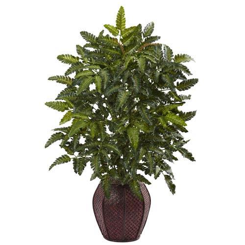 Bracken Fern with Decorative Planter