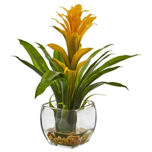 Bromeliad with Vase Arrangement