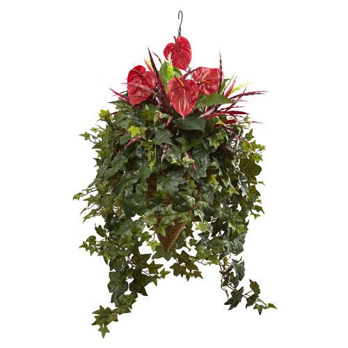 Mixed Anthurium Hanging Basket