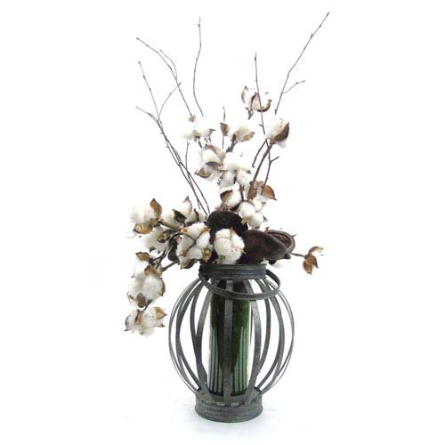 Natural Cotton Stems in Metal Lantern