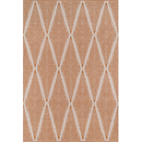 River Orange Indoor/Outdoor Rug