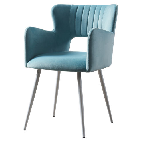 Waverly Powder Blue and White Armchair with Metal Leg