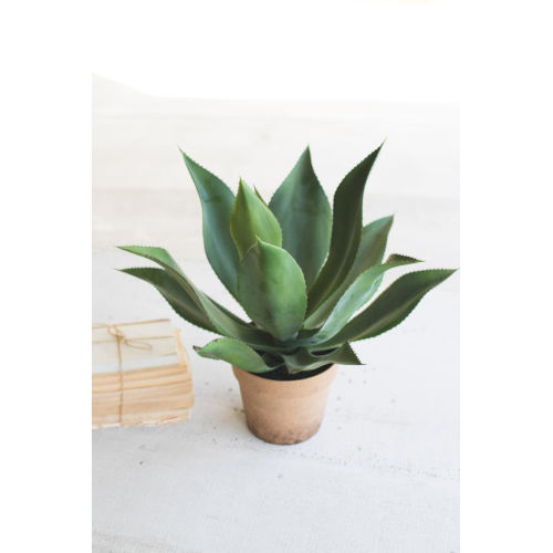 Green Artificial Agave In Painted Plastic Pot