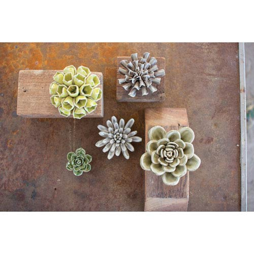 Greys and Greens Ceramic Succulents, Set of Five