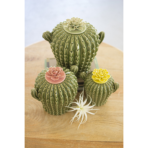 Set of Three Cactus Canisters with Flower Tops
