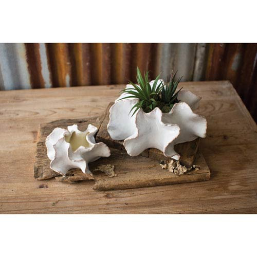 Organic Ceramic Planters, Set of Two