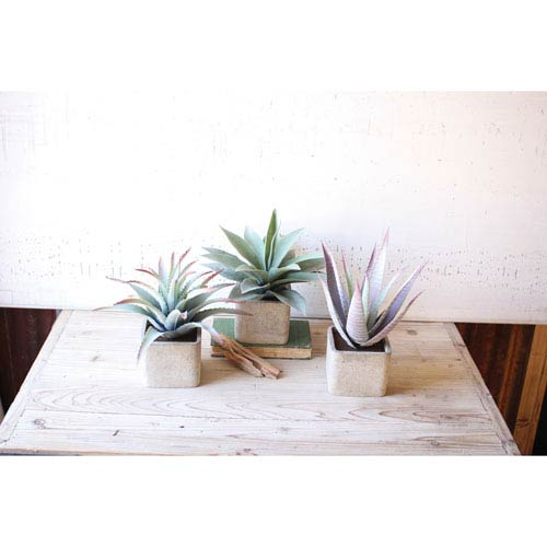 Large Artificial Succulents in Square Pots, Set of 3