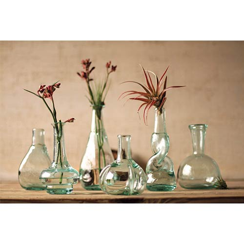 Green Bottle Bud Vase, Set of 6