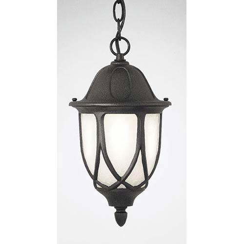 Capella Black One-Light Outdoor Pendant