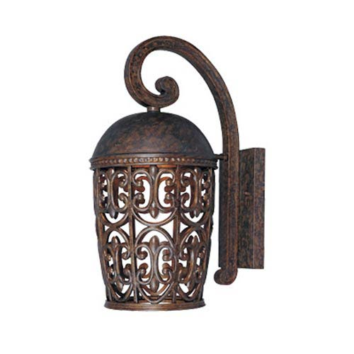 Dark Sky Amherst Burnt Umber One-Light Outdoor Wall Light