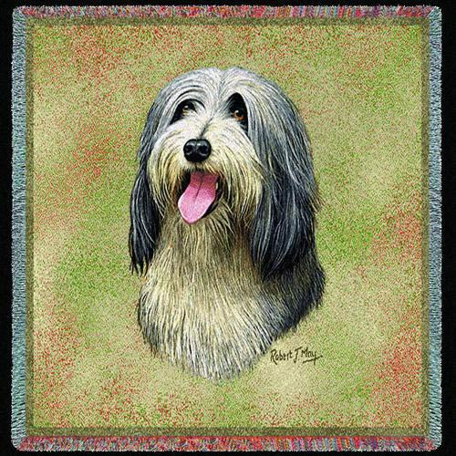 Bearded Collie Lap Square
