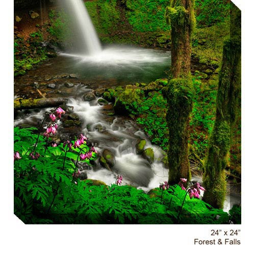 West Of The Wind Designs Forest and Falls: 24 x 24 All Weather Outdoor Photograph Canvas Giclee