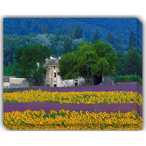 West Of The Wind Designs Provence: 40 x 30 Outdoor Canvas Giclee