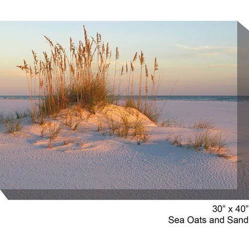 West Of The Wind Designs Sea Oats and Sand: 40 x 30 All Weather Outdoor Photograph Canvas Giclee