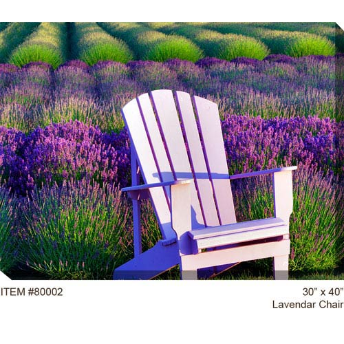 West Of The Wind Designs Lavender Chair: 40 x 30 Outdoor Canvas Art