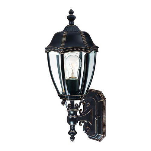Dolan Designs Roseville Antique Bronze Large One-Light Outdoor Wall Light