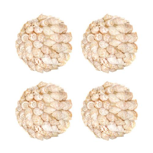 Pomeroy Shell Decorative Accessory, Set of Four