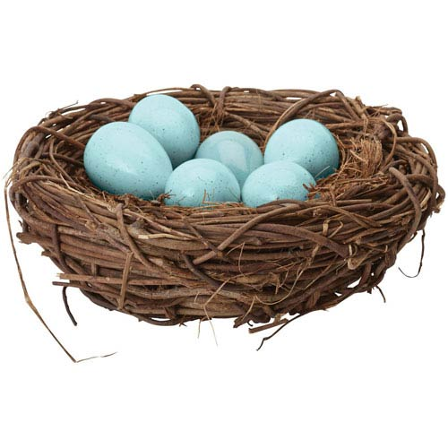 Dimond Home European Blue Starling Eggs in Nest