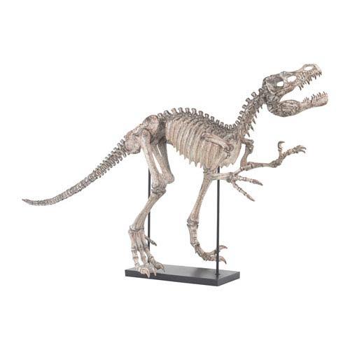 Tyrannos Aged Bone Dinosaur Skeleton