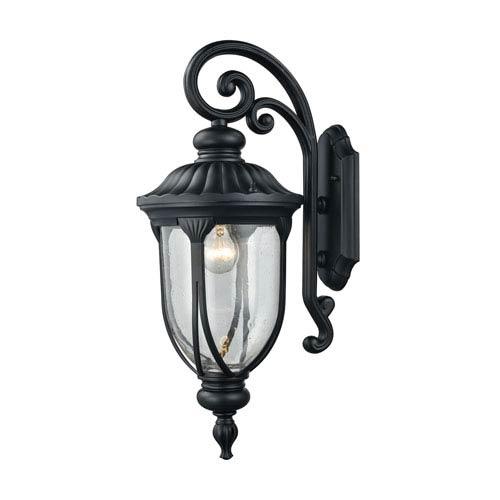 Elk Lighting Derry Hill Matte Black 9-Inch One-Light Outdoor Wall Lantern