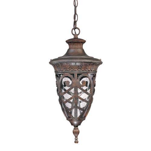 Aston Outdoor Hanging Pendant