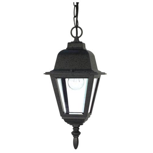 Briton Textured Black One-Light Outdoor Pendant with Clear Glass