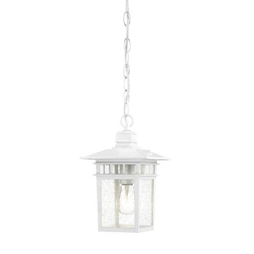 Cove Neck White Finish One Light Outdoor Hanging Pendant with Clear Seeded Glass