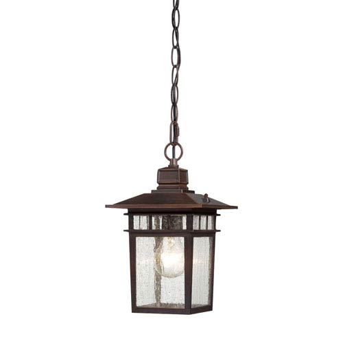 Cove Neck Rustic Bronze Finish One Light Outdoor Hanging Pendant with Clear Seeded Glass
