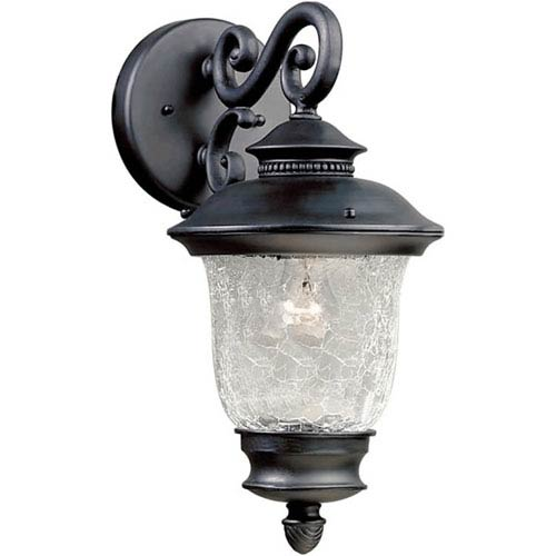 Black Cast Aluminum One-Light Outdoor Wall Lantern