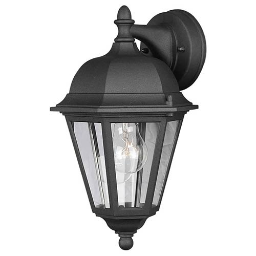 Forte Lighting Black One-Light Cast Aluminum Outdoor Wall Sconce with Clear Glass Panel