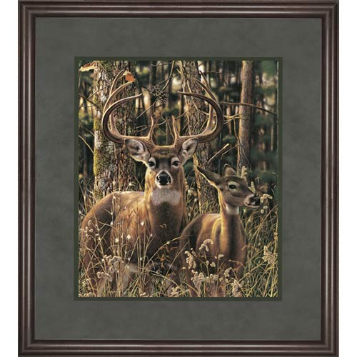 Woodland Shadows by Jay Kemp: 26 x 23.5 Framed Open Edition Lithograph Art Print