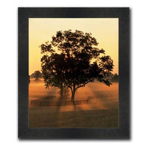 Hadley House Morning Splendor by Adam Jones: 21 x 25 Framed Print Reproduction