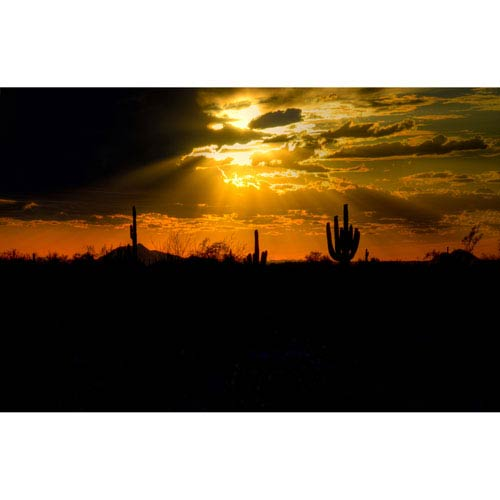 Hadley House A Desert Sunset by Kelly Wade, 9 x 12 In. Canvas Art