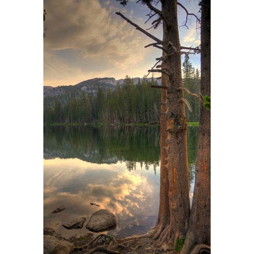 Hadley House Mamie Lake Trees Mammoth California by Kelly Wade, 30 x 40 In. Canvas Art