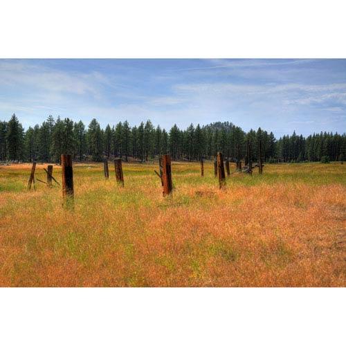 Hadley House Tahoe Fence by Kelly Wade, 18 x 24 In. Canvas Art
