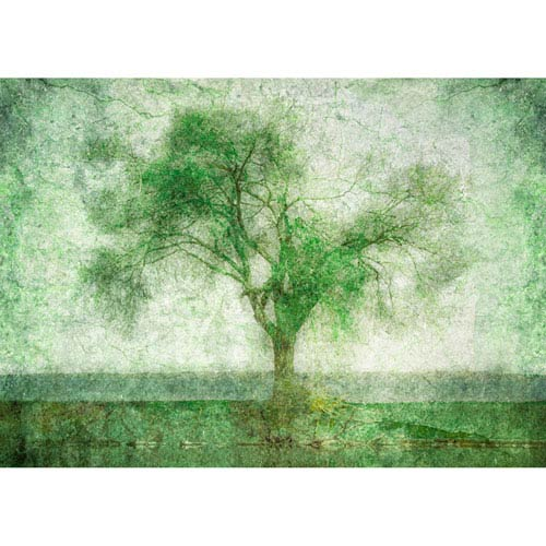 Tree At The Lake by Hal Halli, 18 x 24 In. Canvas Art