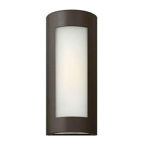 Hinkley Solara Bronze 14-Inch One-Light Outdoor Wall Light