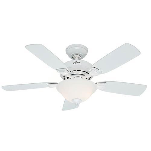 Hunter Fans Caraway White Two Light 44-Inch Ceiling Fan