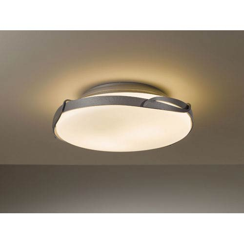 Flora Burnished Steel Two Light Semi-Flush with Opal Glass