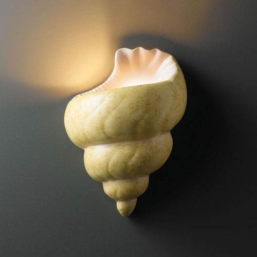 Ambiance Conch Shell Conch Shell Bathroom Wall Sconce