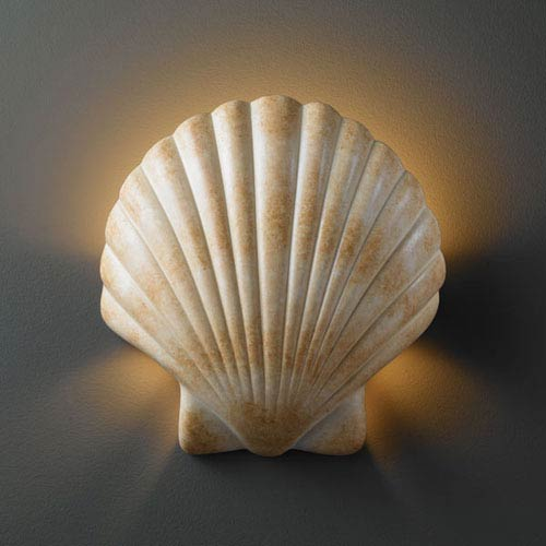 best cheap c4b8e 4b7b8 Ambiance Scallop Shell Scallop Shell Bathroom Wall Sconce