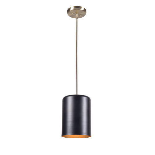 Porter Black and Antique Brass One-Light Mini Pendant