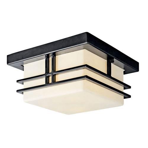 Tremillo Black One-Light Fluorescent Outdoor Flush Mount