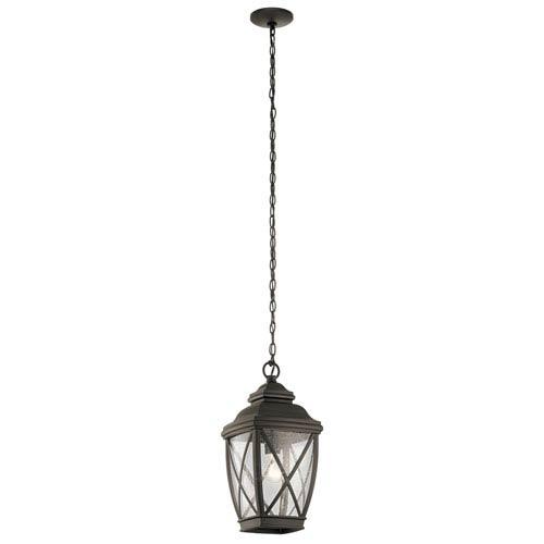 Tangier Olde Bronze 10-Inch One-Light Outdoor Hanging Pendant