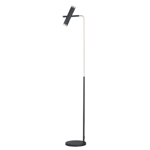 Ambit Black and Satin Nickel Two-Light LED Floor Lamp